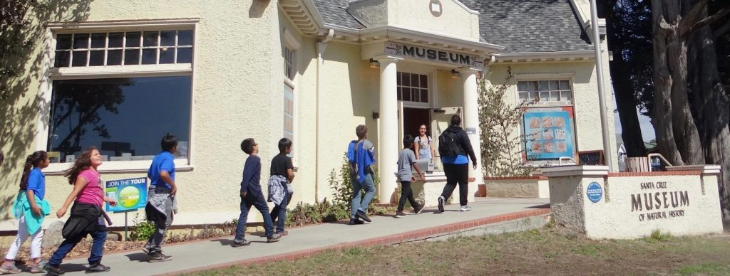 Children proceeding up the walkway to the museum entrance
