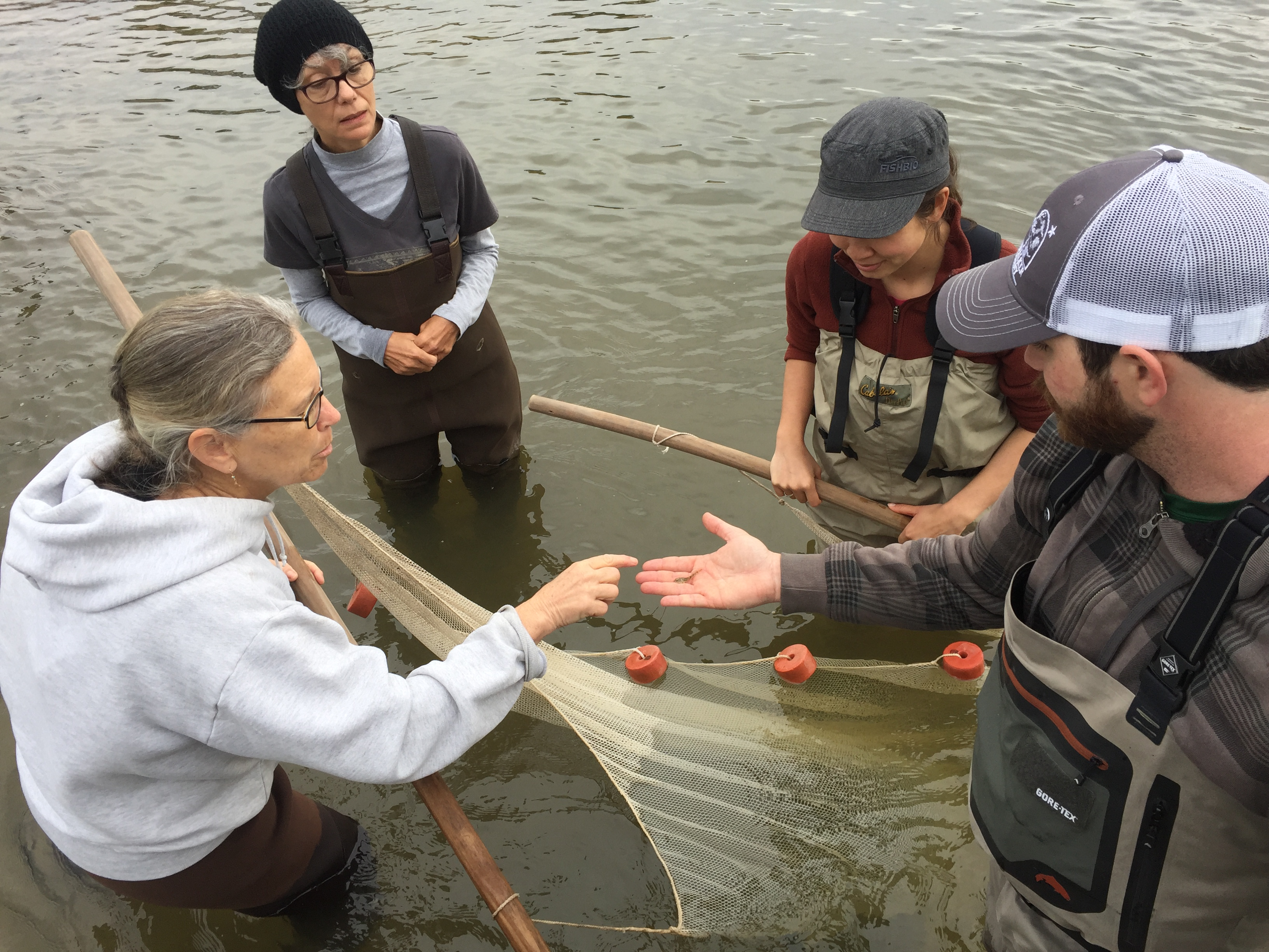 Citizen scientists collecting data in a marine environment