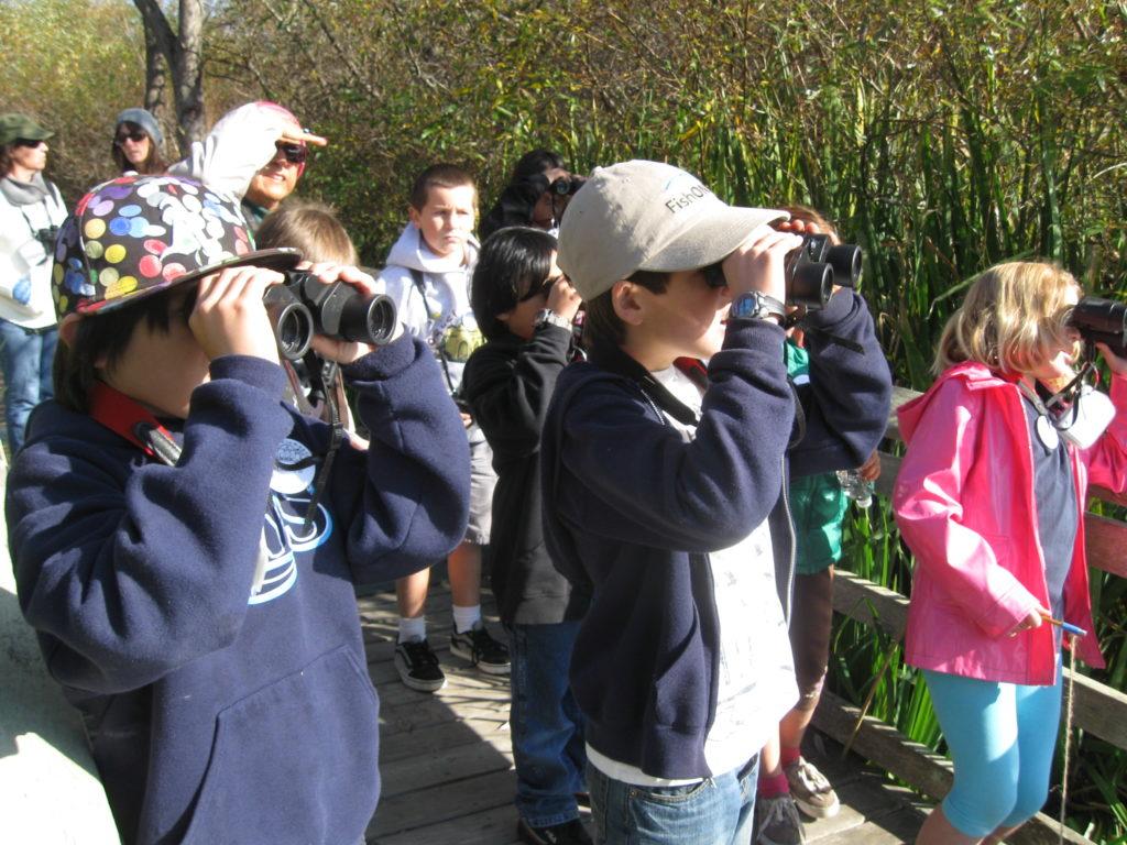 A group watches through binoculars from an observation platform