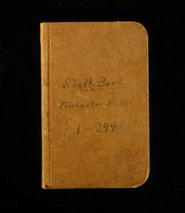 Laura Hecox's shell catalog