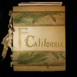 Beautiful naturalist's folio