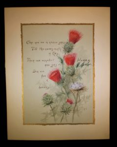 Folio page on red thistles