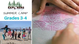 Summer Camp Grades 3-4