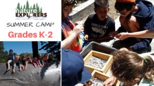 Summer Camp Grades K-2