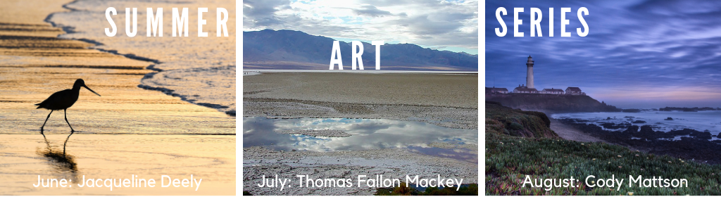 banner for the Summer Art Series of exhibits