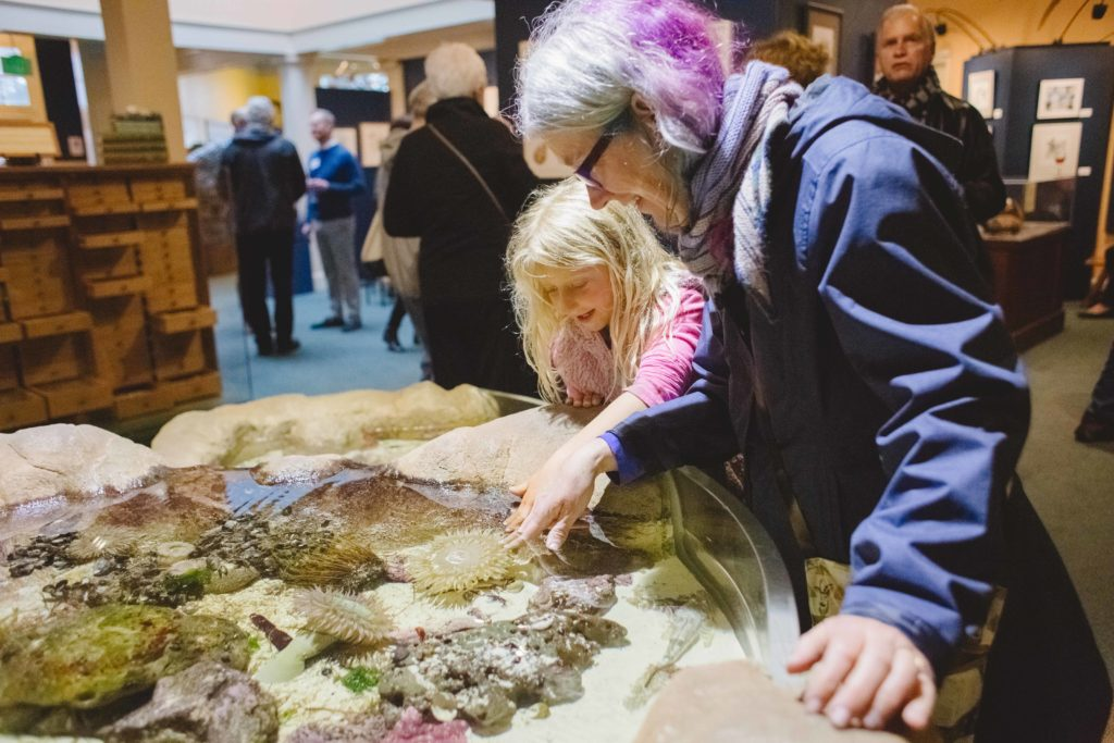 woman shows girl the tidepool