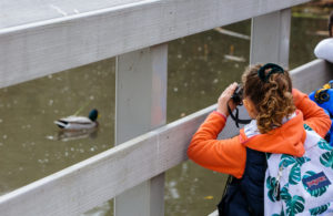 A child views a duck through binoculars