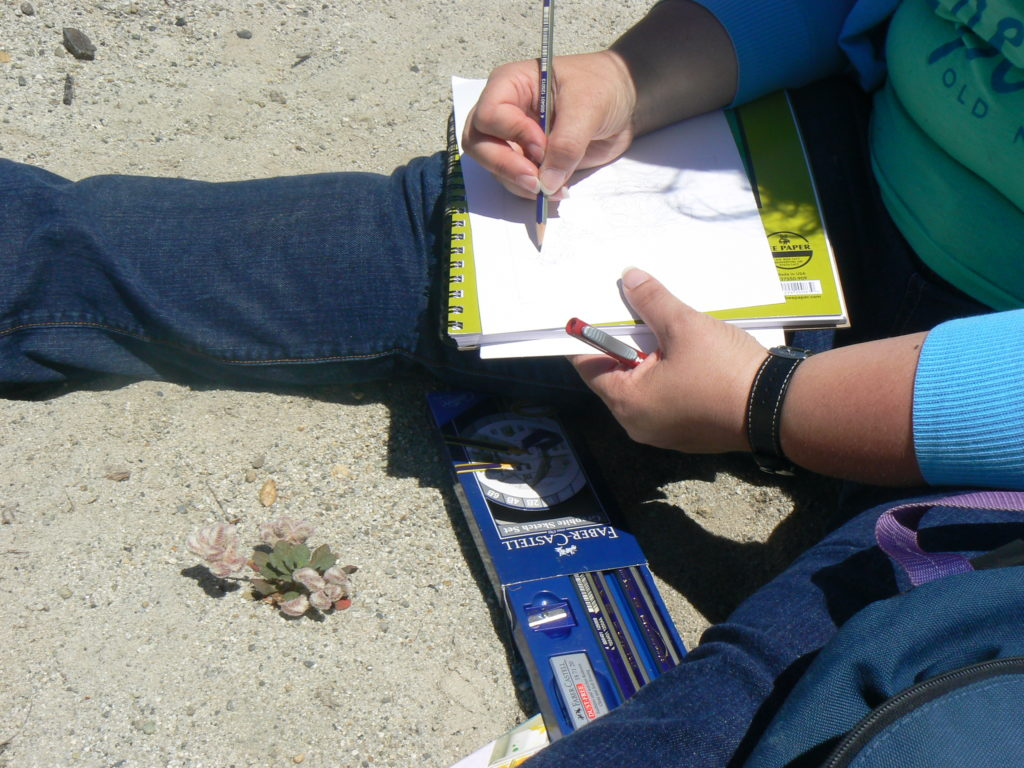 Recording data in an observation journal