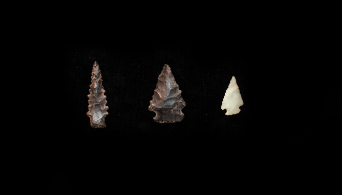 Stone points from Northern California