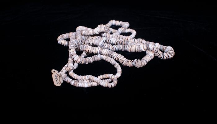 Olivella shell necklace