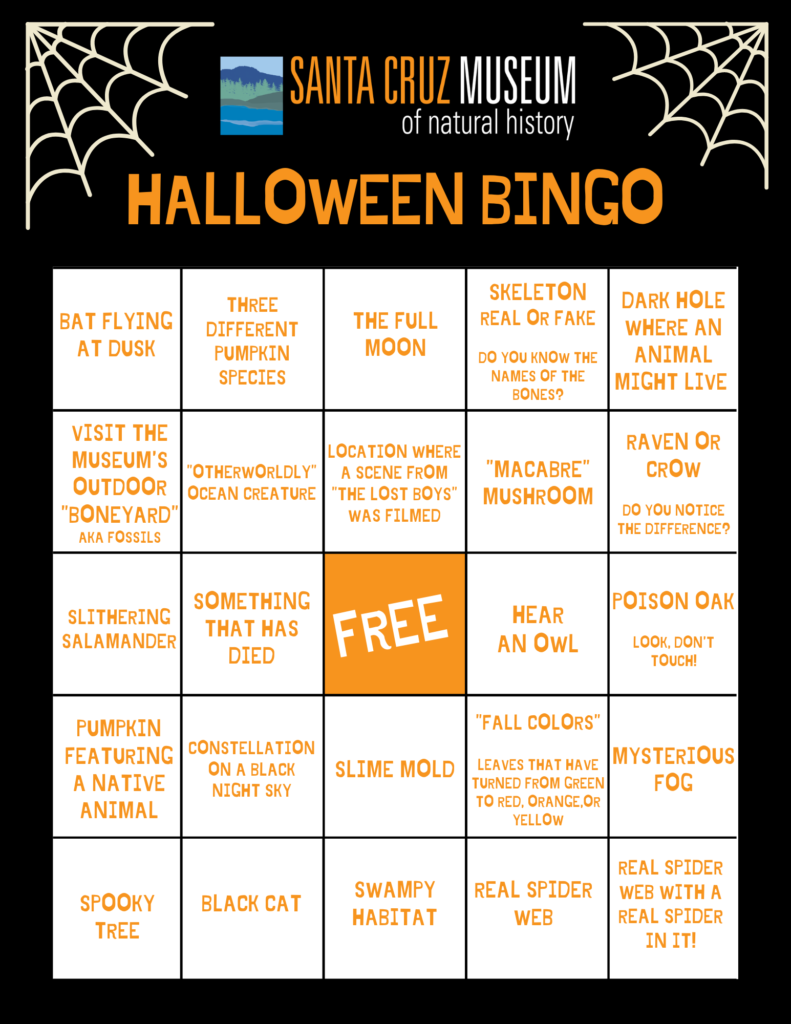 "A 5x5 grid of halloween prompts with the title ""Halloween Bingo."""