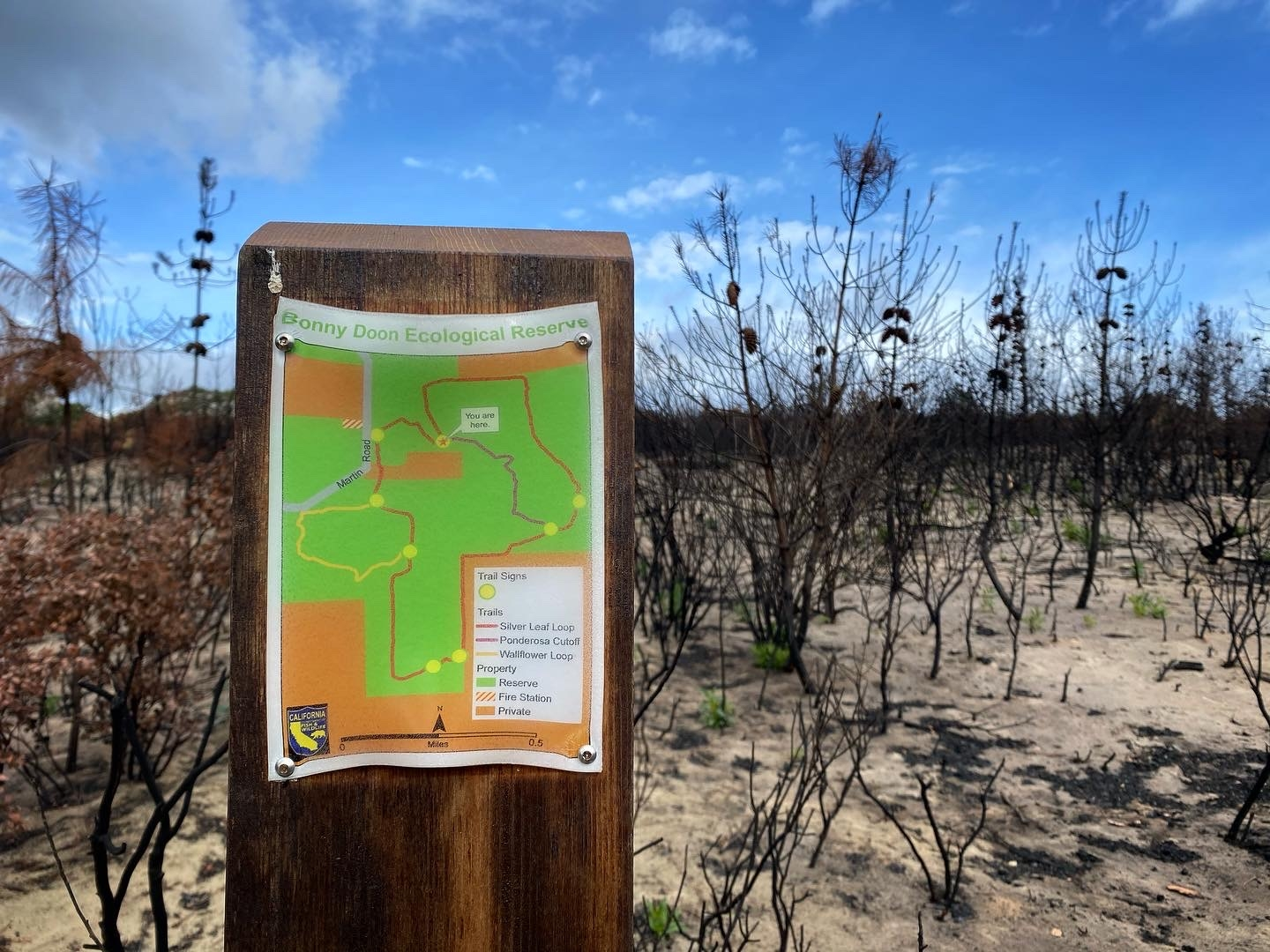 A wooden post holds a melted plastic map of the Reserve, with a burned landscape in the background.