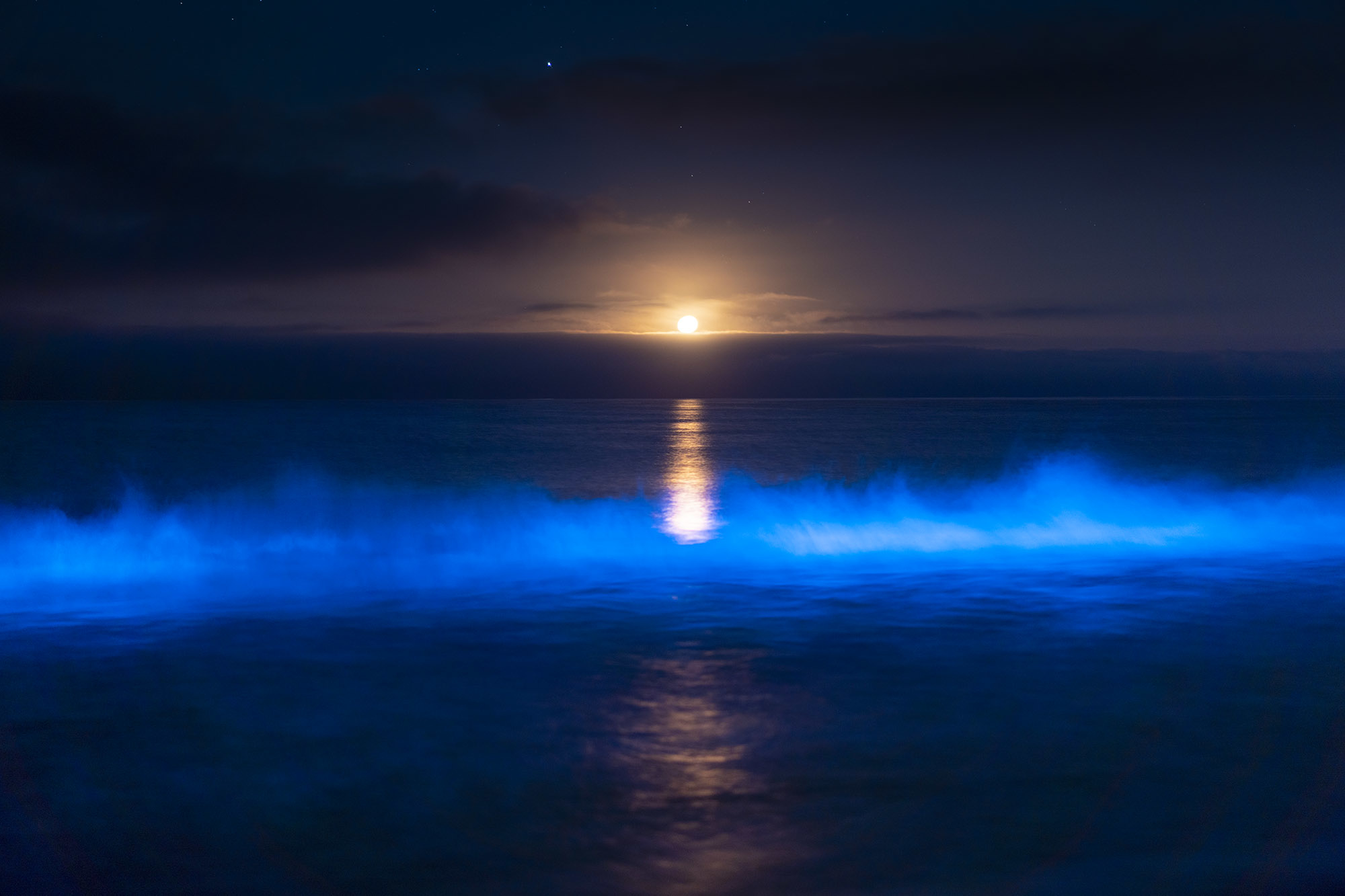A glowing wave crests with a full moon shining on the horizon.