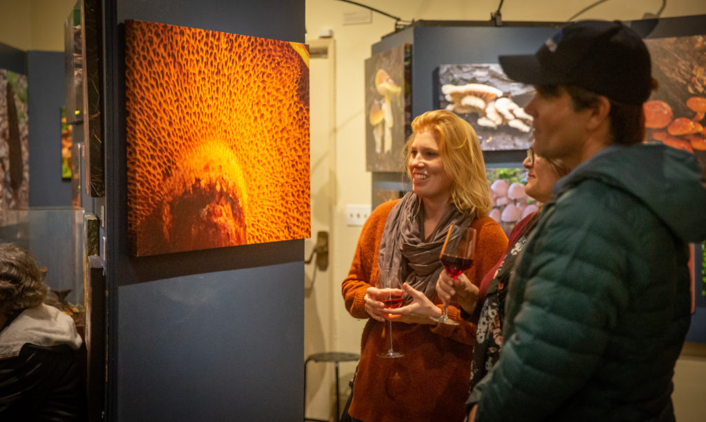 Three people looking at a photo of a mushroom during an exhibit opening
