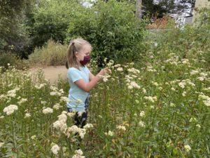 girl in summer camp among yarrow plants